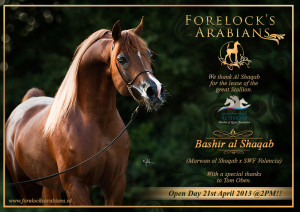 Advertentie-Bashir_Al-Shaqab- open dag